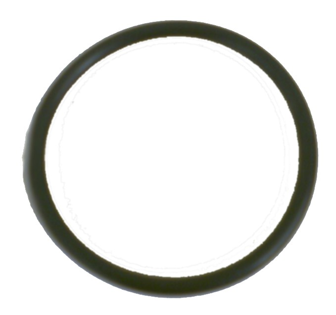 Viton O-Ring for 2.00 Inch QDC's